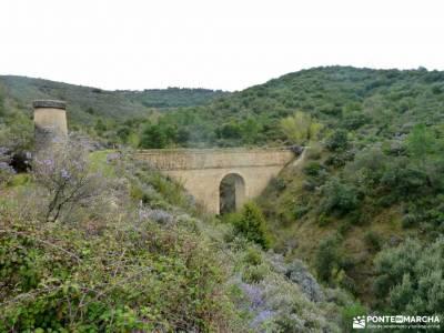 Alcornocal Dehesa Vieja-Atalaya Arrebatacapas;ruta imperial valle de aspe semana santa portugal
